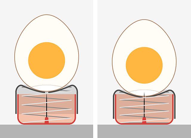 """""""Eierstecher"""" (perforador d'ous), de Rainer Zenz, a la Viquipèdia"""